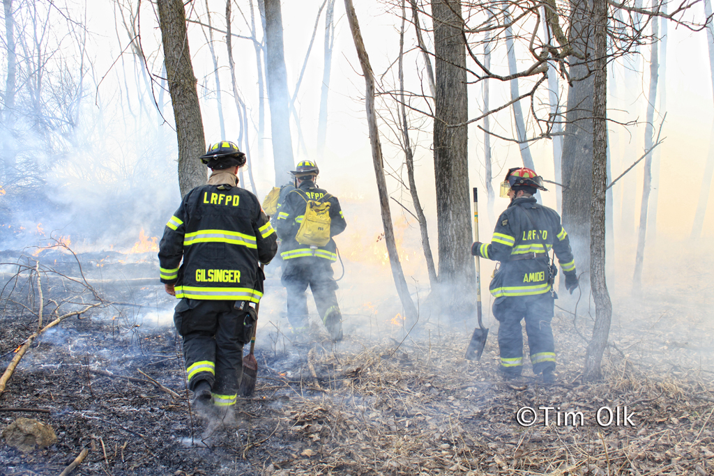 brush fire Potawatami Woods Prospect Heights 3-11-12