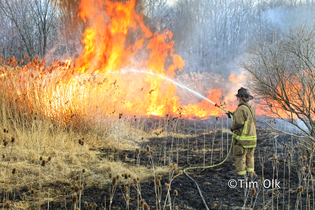 brush fire Potawatami Woods Prospect Heights 3-11-12