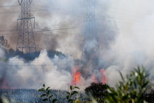 Large brush fire in Buffalo Grove 7-8-12