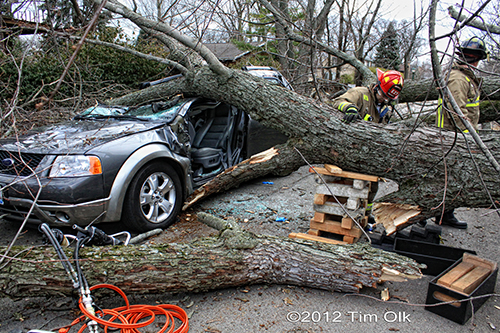 tree crushes car with occupants in Wilmette 11-23-12