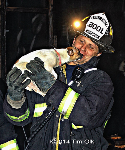 fireman rescues dog from fire