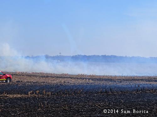 large grass fire