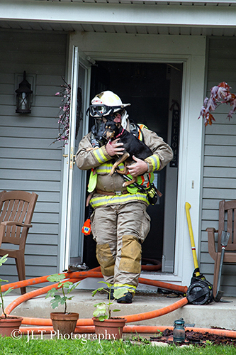 fireman carries dog from house after fire