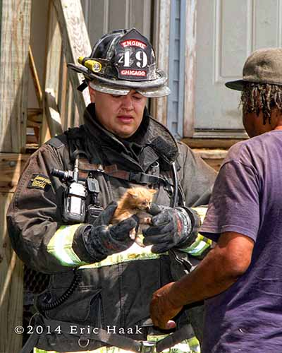 fireman rescues cat from house fire
