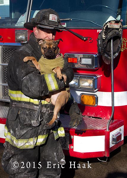 fireman with dog after fire