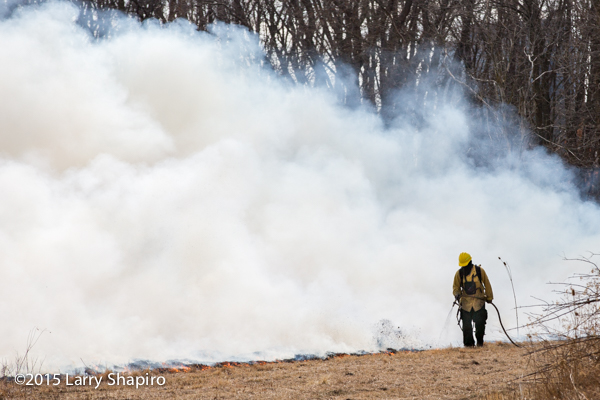 wildland firefighter at prescribed burn