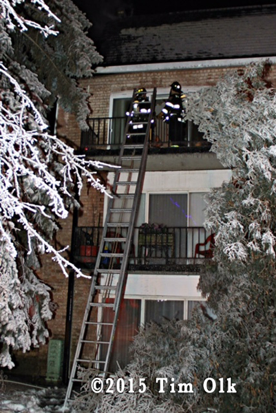 tress covered with ice after building fire