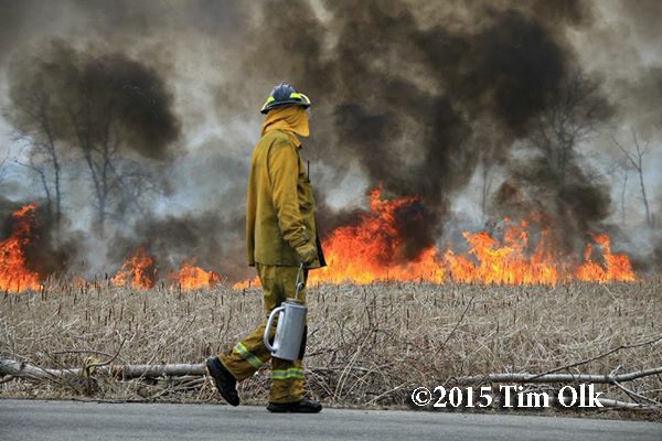 controlled wildland burn