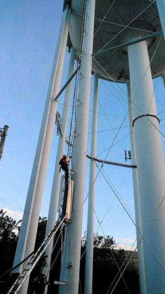 juveniles stranded on water tower