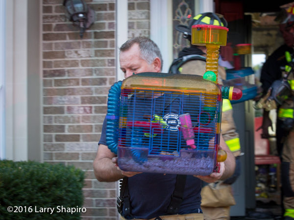 firefighter saves pets from fire