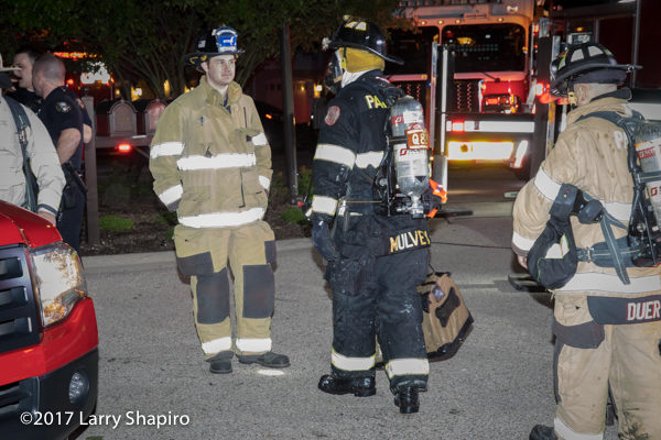 Firefighter brings cat from fire building