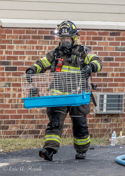 Firefighter carries hamster cage from fire building