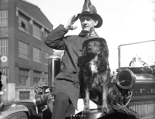 vintage Firefighter and firehouse dog wearing a helmet