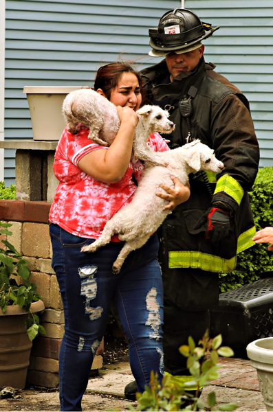 Firefighter returns dogs to resident after a fire