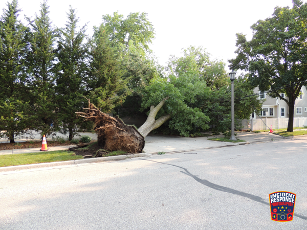 Storm damage in Milwaukee County, WI 8-11-21