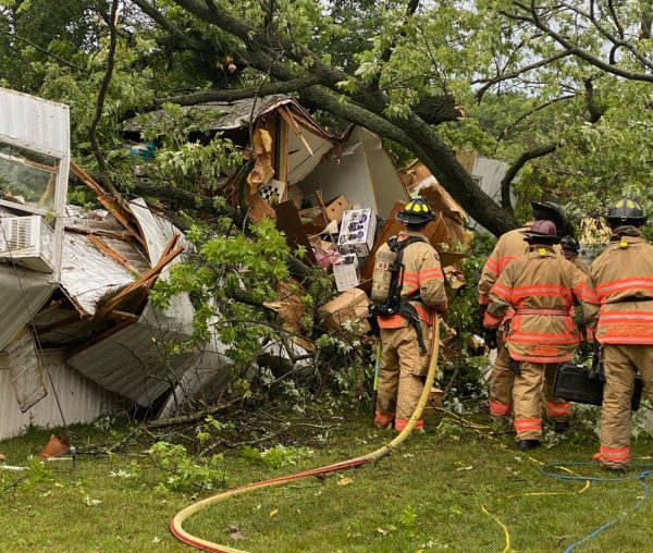 woman dies after tree crushes her mobile home