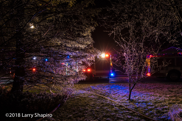 thin coating of ice on trees at fire scene